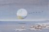 Migration, 48X71