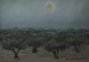 Martin Clair De Lune Sur Les Oliviers