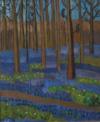Jacinthes Sauvages En Tapis Bleu Dans La Forêt