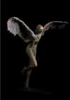 Départ D'icare, Bronze