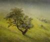Jef Van Grieken Yswyth Valley Iii, Wales, 56X64